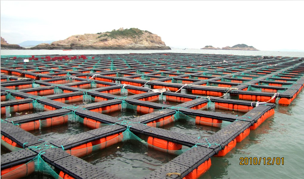 Fishing net net cage fishing net manufacturer for Fish breeding net